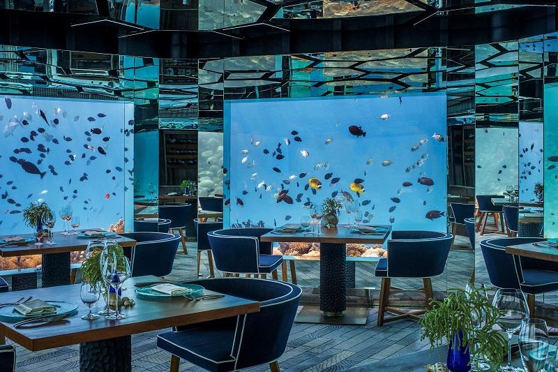 ハネムーン旅行におすすめ!モルディブで注目の水中レストラン6選