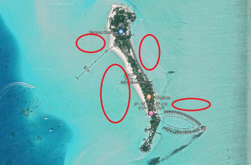 モルディブの水上コテージの前のハウスリーフをチェック