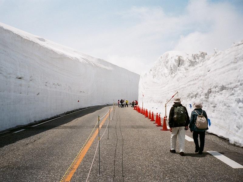 富山県は観光名所が何もない?立山黒部やトロッコ列車など見所満載!