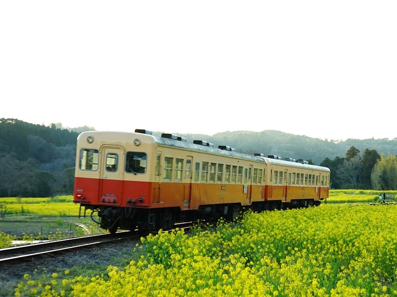 JR運賃計算:連絡会社線(通過連絡運輸)