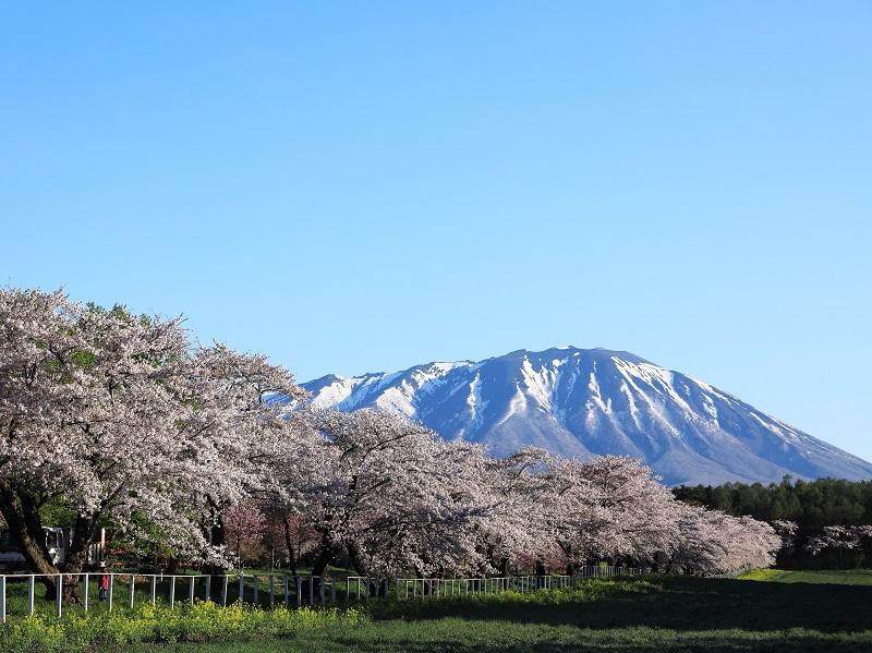 岩手県の観光と言ったら自然とお寺!おすすめ&穴場のスポットは?
